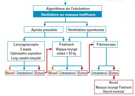 association francaise anesthesistes reanimateurs
